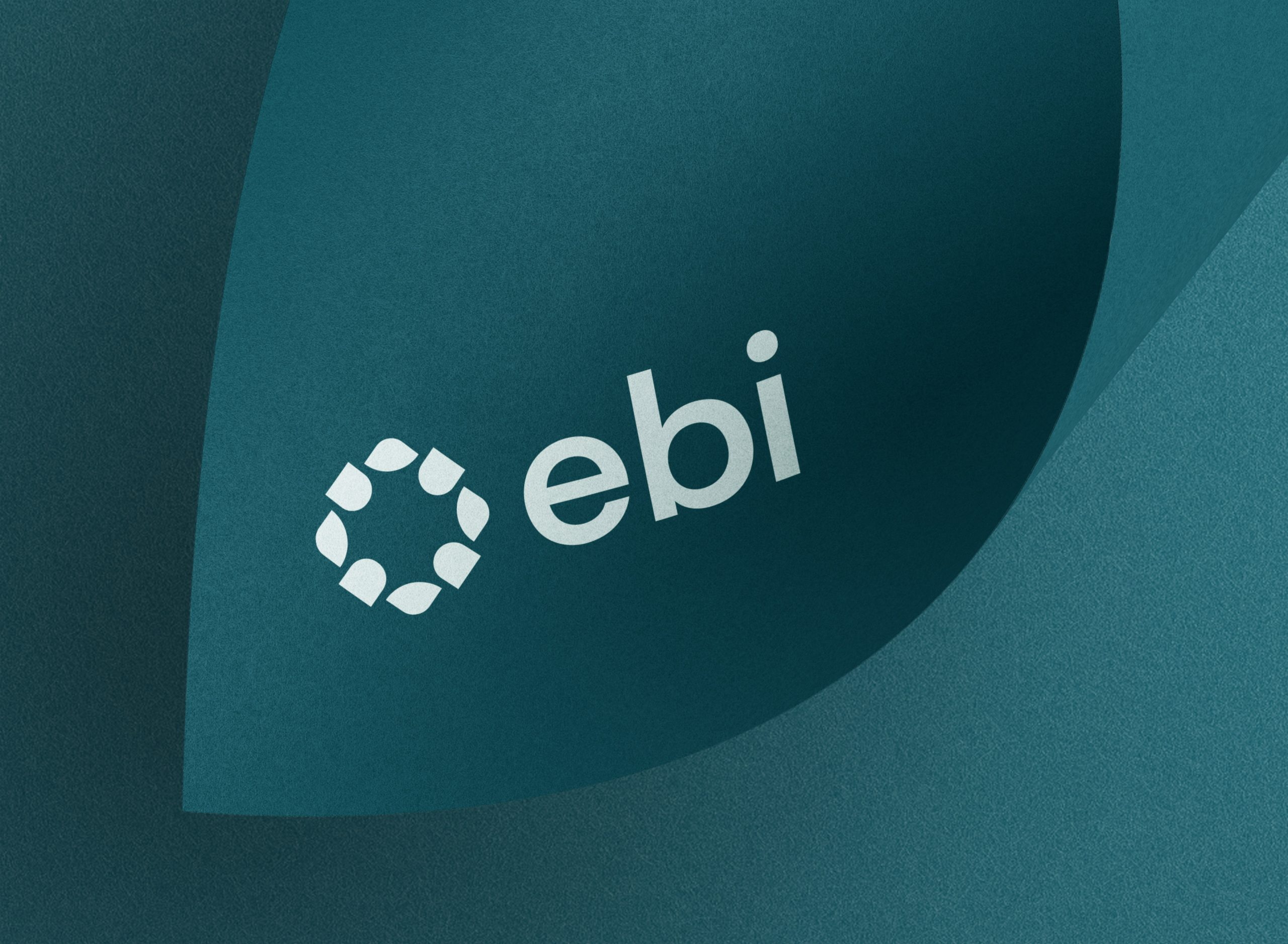 EBI-logo-design-on-brochure